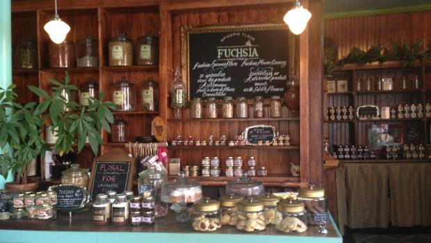 Café Fuchsia - Épicerie fleur : les fleurs à leur meilleur !