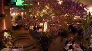 jardins-nelson-montreal