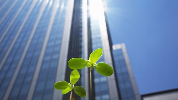Emplois verts: l'avenir s'offre à vous