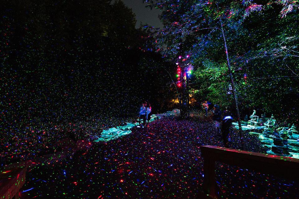 Explorez la forêt enchantée de Coaticook