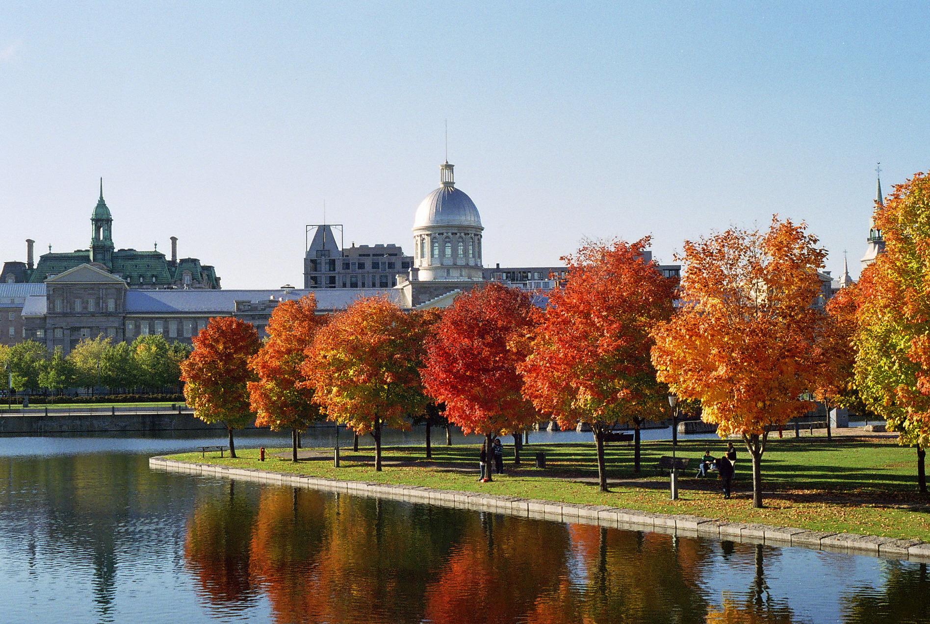 6 moments d'évasion gratuits à Montréal